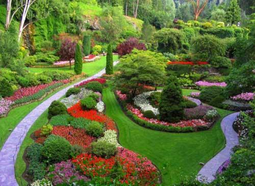 amenager son jardin pas cher